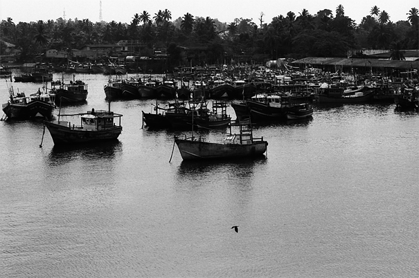 Fishing Boats After Working @ Sri Lanka