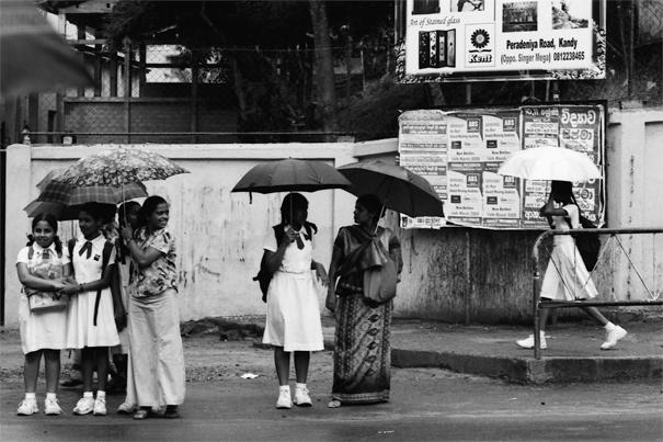 Women waiting at bus stop with putting umbrella up