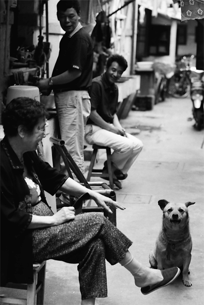 People and dog relaxing in lane