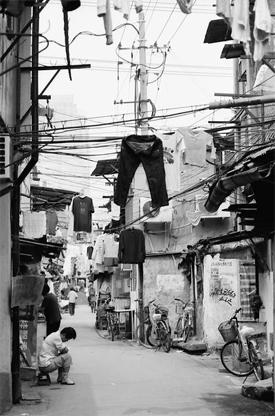 Trouser Flies (China)