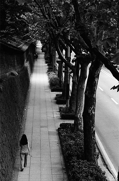Walking The Avenue @ South Korea