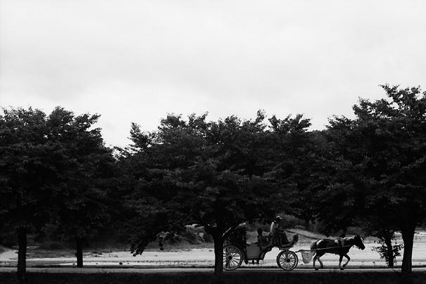 Carriage Goes @ South Korea