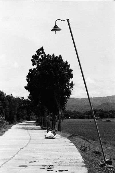 Inclined Lamppost @ Philippines