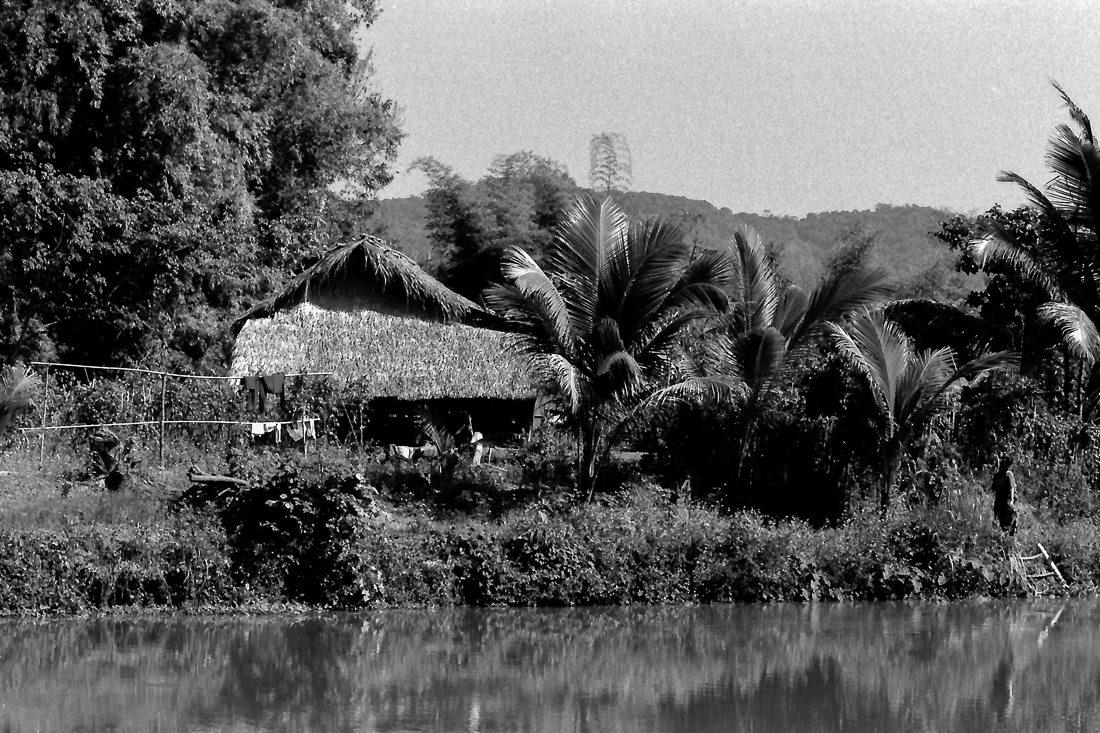 池の畔に立つ藁葺きの家