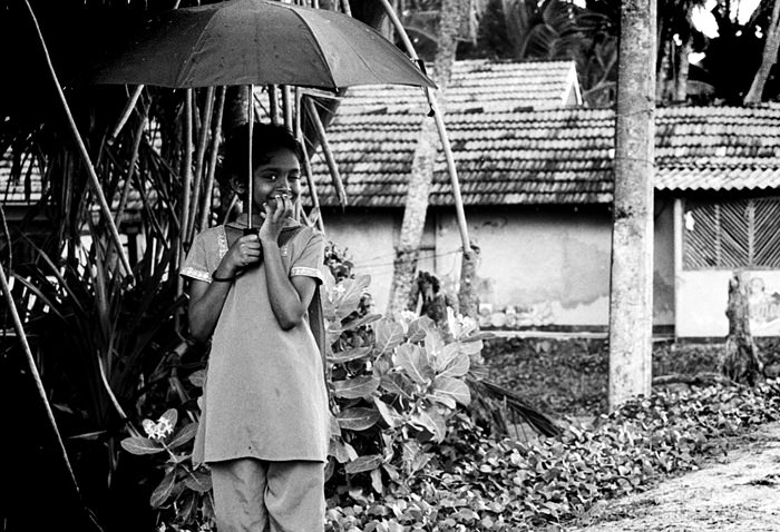 Girl Winked In The Rain (Sri Lanka)