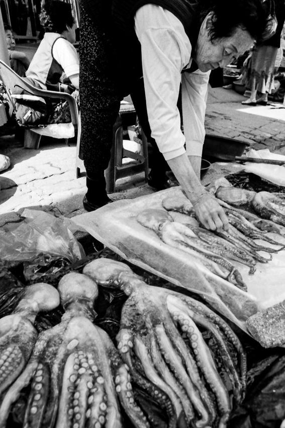 Older woman selling octopus in Sokcho