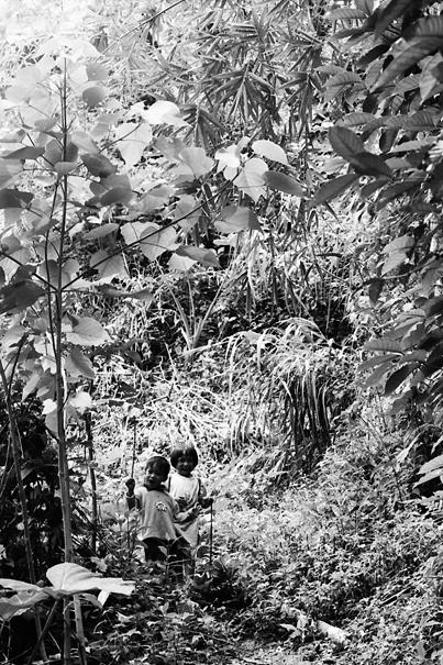 Kids in bush looking at me