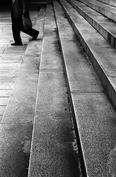 Steps In Meiji Jingu (Tokyo)