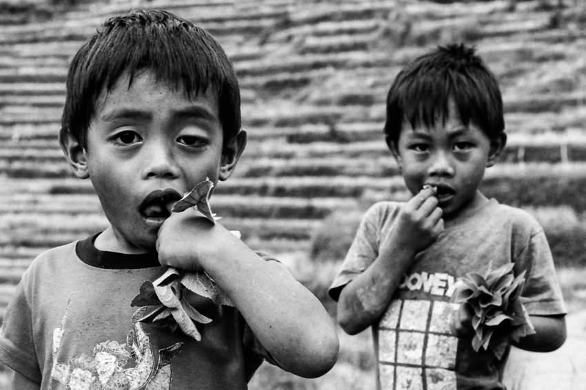 Boys biting leaf
