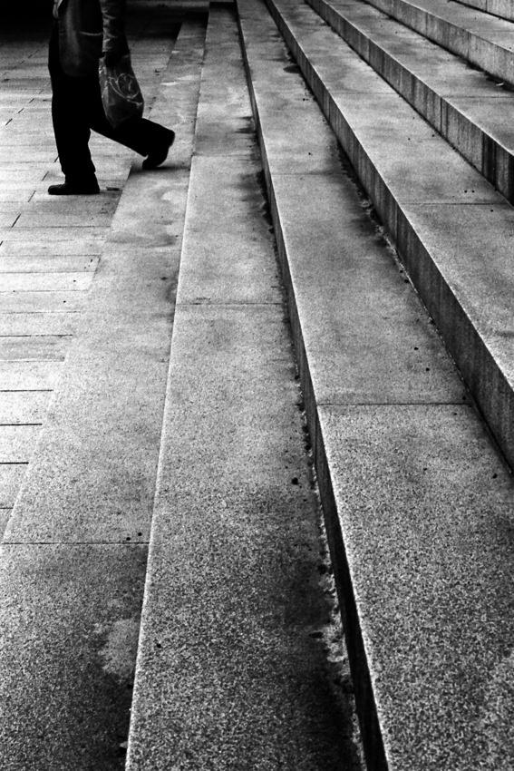 Steps in Meiji Jingu