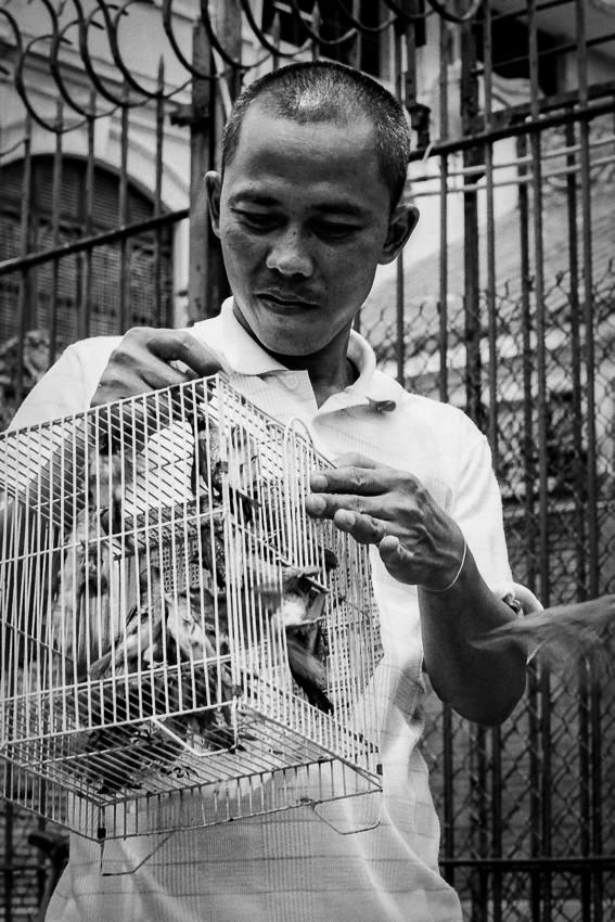 仏教寺院の前で放生するための鳥籠を持っていた男
