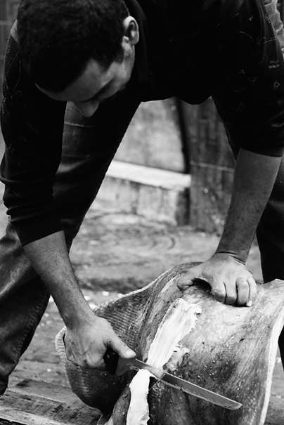 Fishmonger cutting ray