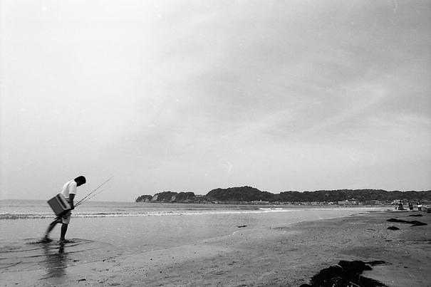 Drooping Fisher (Kanagawa)