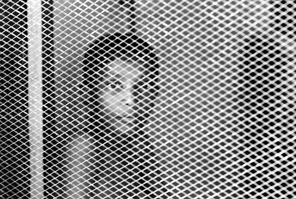 Boy watching through screen window