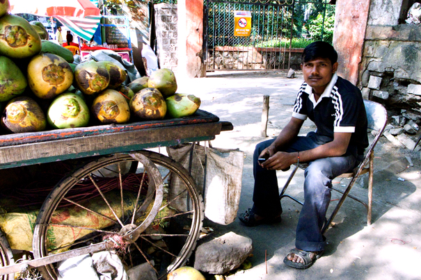 Man Selling Coconuts @ India