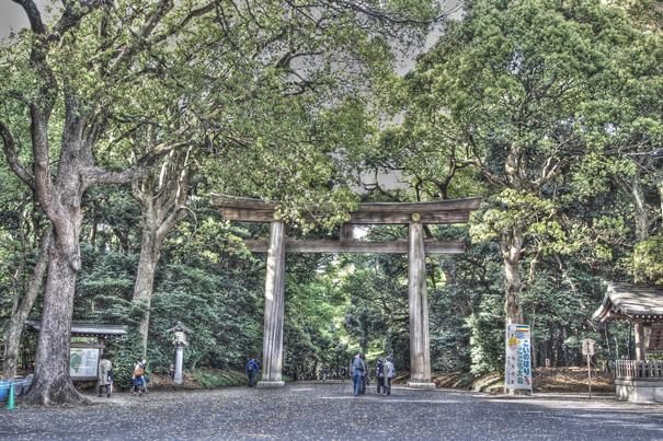 Big Wooden Torii (Tokyo)