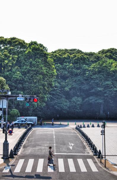 Woman Walking The Crosswalk @ Tokyo