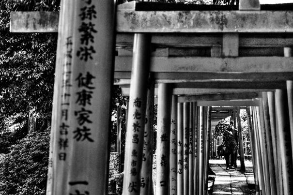 Umbrella walking through Torii