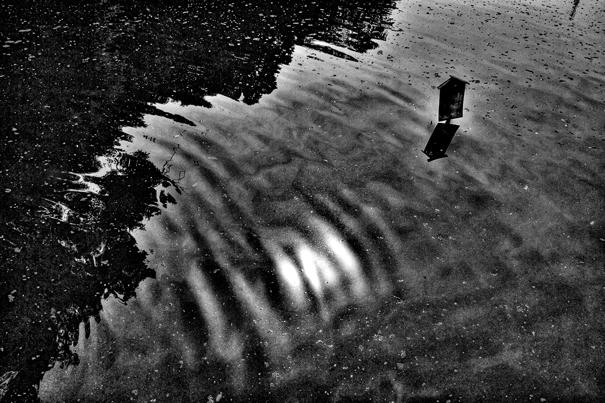 池の中の立て札