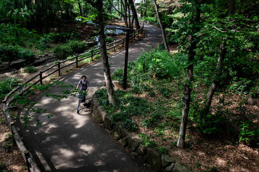 Path in RInshi No Mori Park