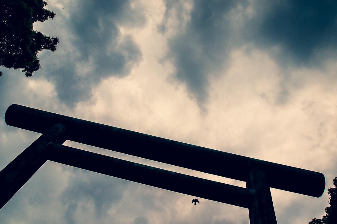 Torii and bird