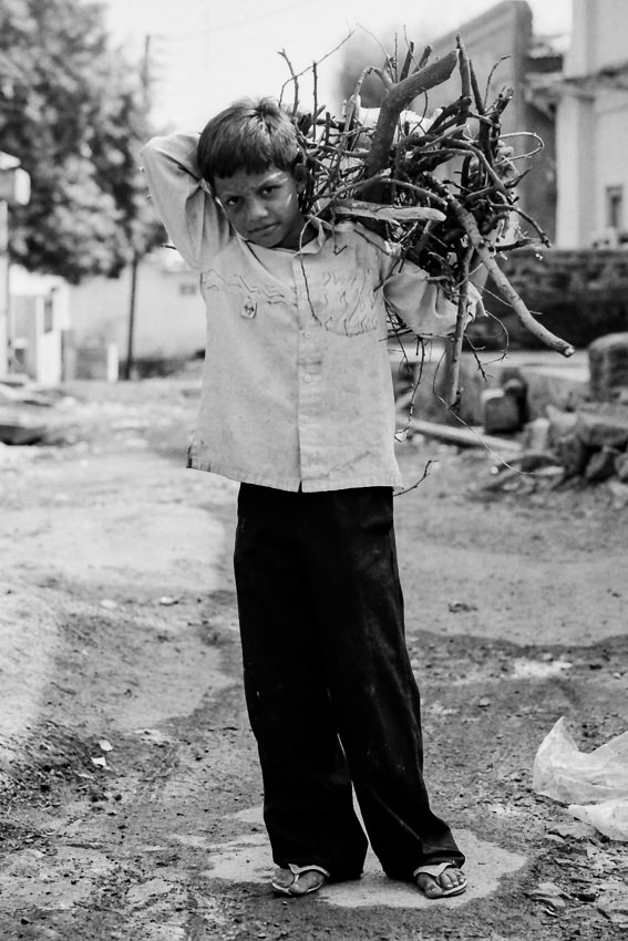 Boy carrying firewoods