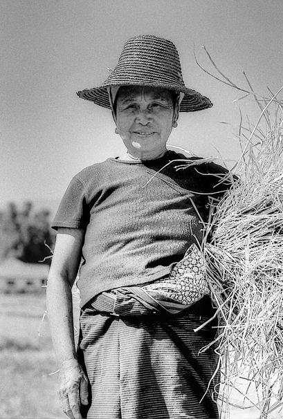 刈り取った藁を抱えた農家の人