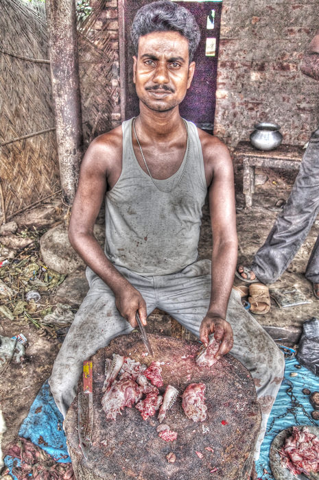 Horse-faced Butcher (India)
