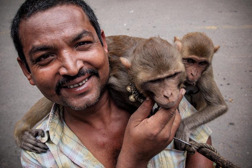 Man walking with monkeys