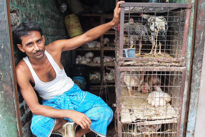 Man selling chickens