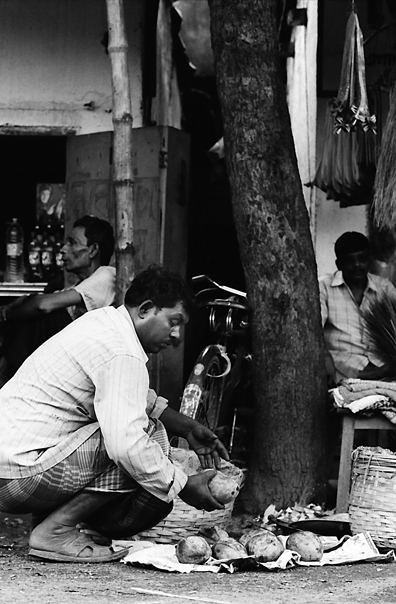 Man Was Putting Mangoes @ India