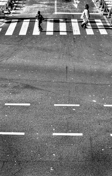Crosswalk @ Tokyo