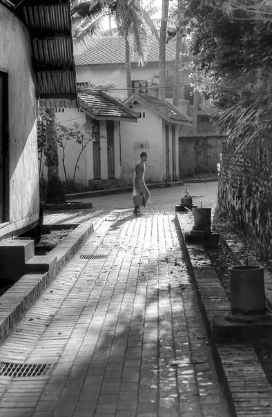 Young Monk In The Lane (Laos)
