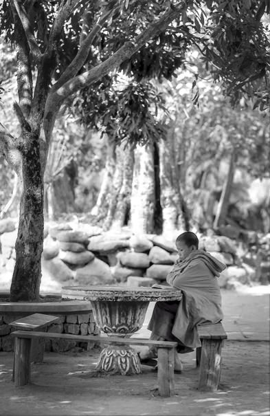 Studying Monk @ Laos