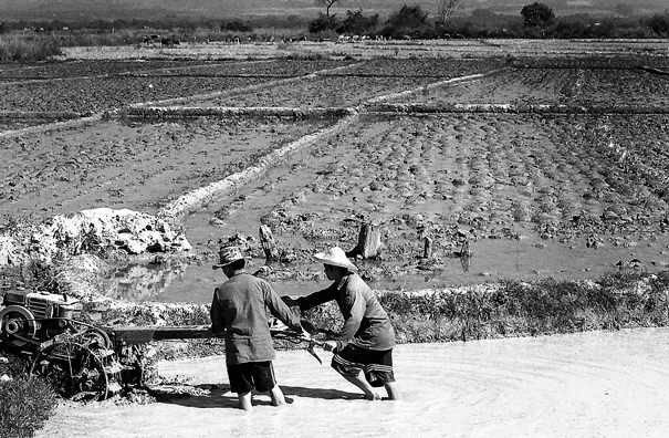Two Men And A Cultivator (Laos)