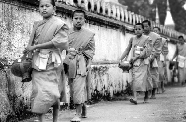 Little Monks In The Line (Laos)
