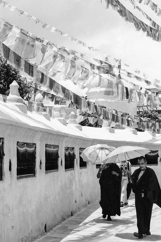 Buddhist monk walking under flags