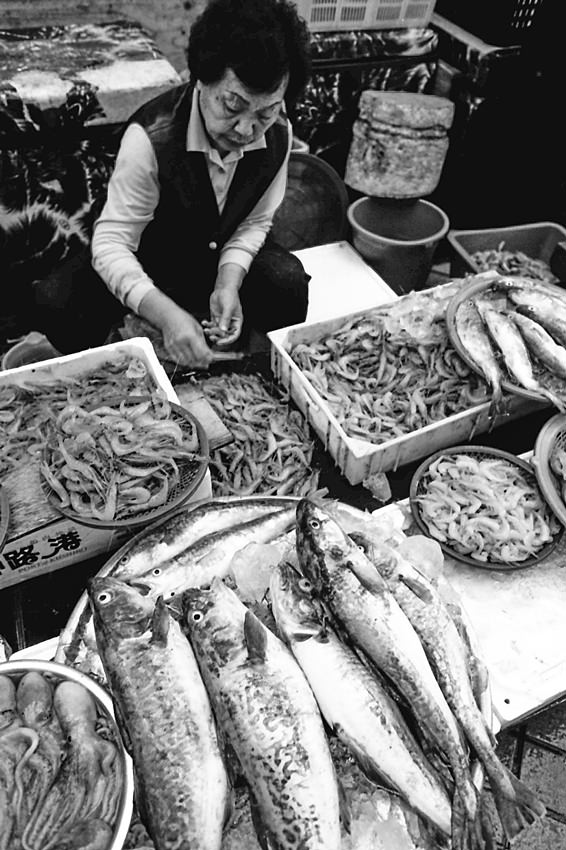Woman working in fish market