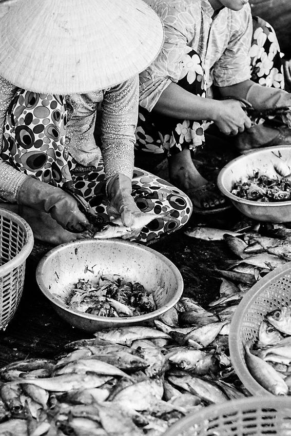 Women gutting fish