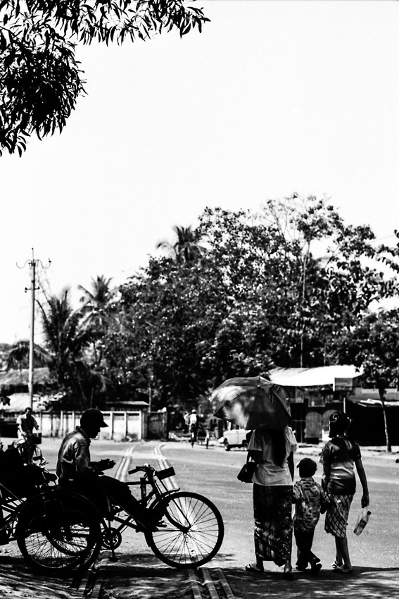 Pedicab in tree shade