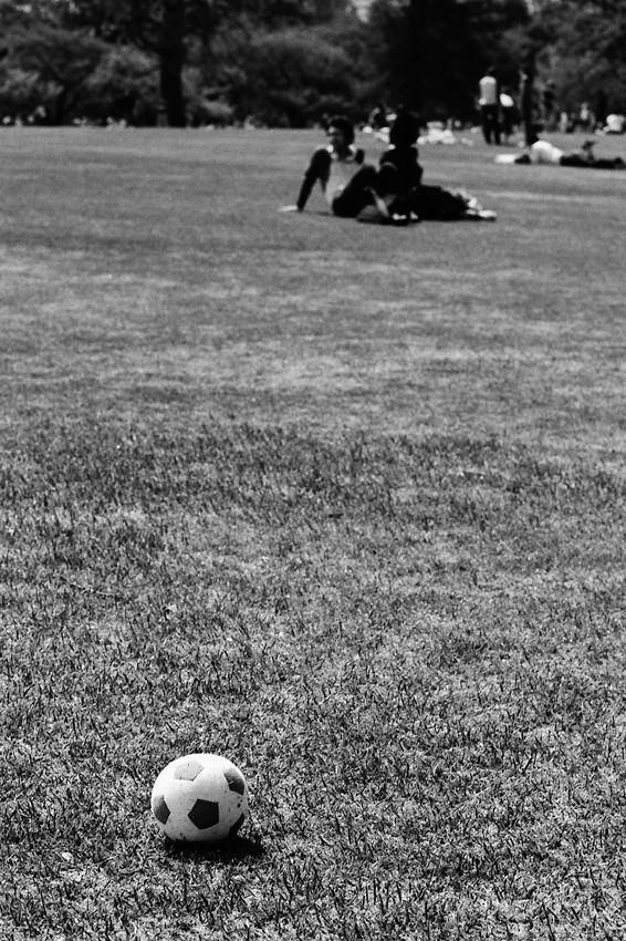 Ball on turf