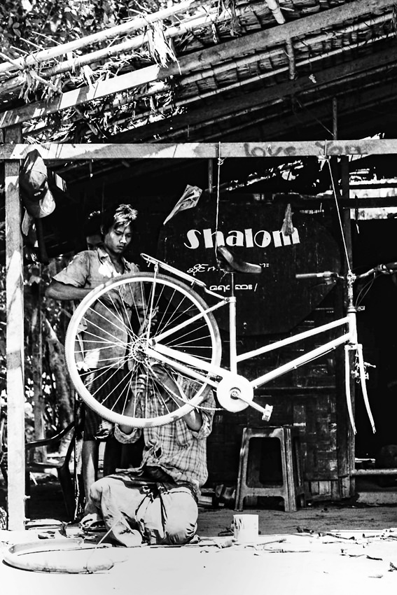 Bicycle repairman