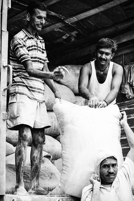 Three laborers working