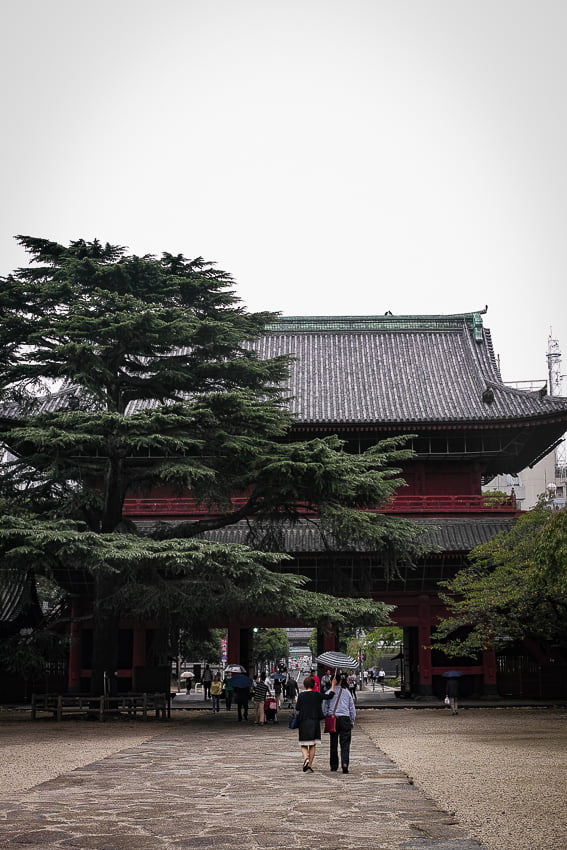 Couple walking the precincts of Zojo-ji