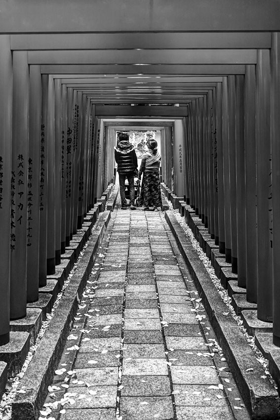 鳥居の下を歩く若夫婦