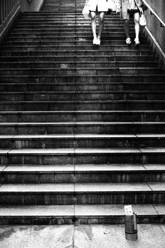 階段の上の四本の脚