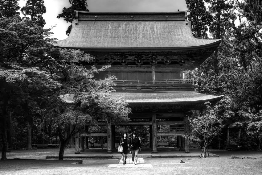 Two women and wooden gate