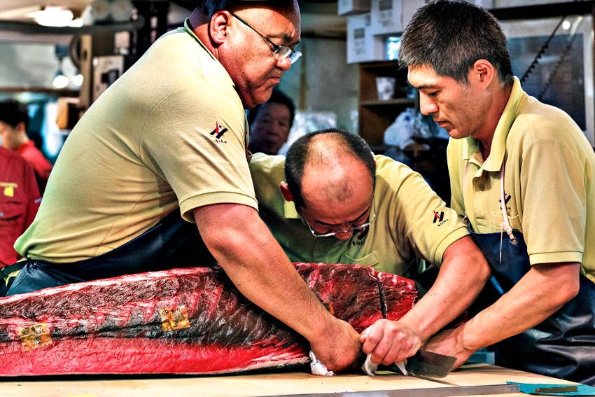 Men cutting tuna together