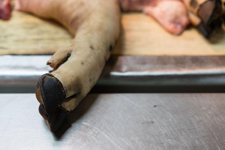 無造作に置かれた豚足