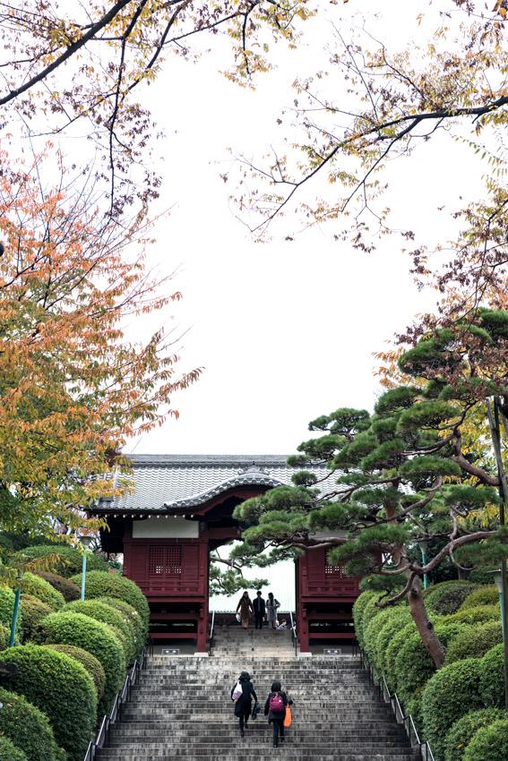 Furo-Mon gate in Gokoku-Ji